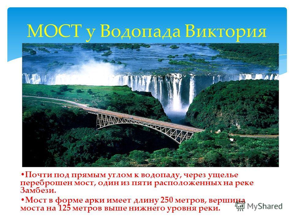 МОСТ у Водопада Виктория Почти под прямым углом к водопаду, через ущелье переброшен мост, один из пяти расположенных на реке Замбези. Мост в форме арки имеет длину 250 метров, вершина моста на 125 метров выше нижнего уровня реки.