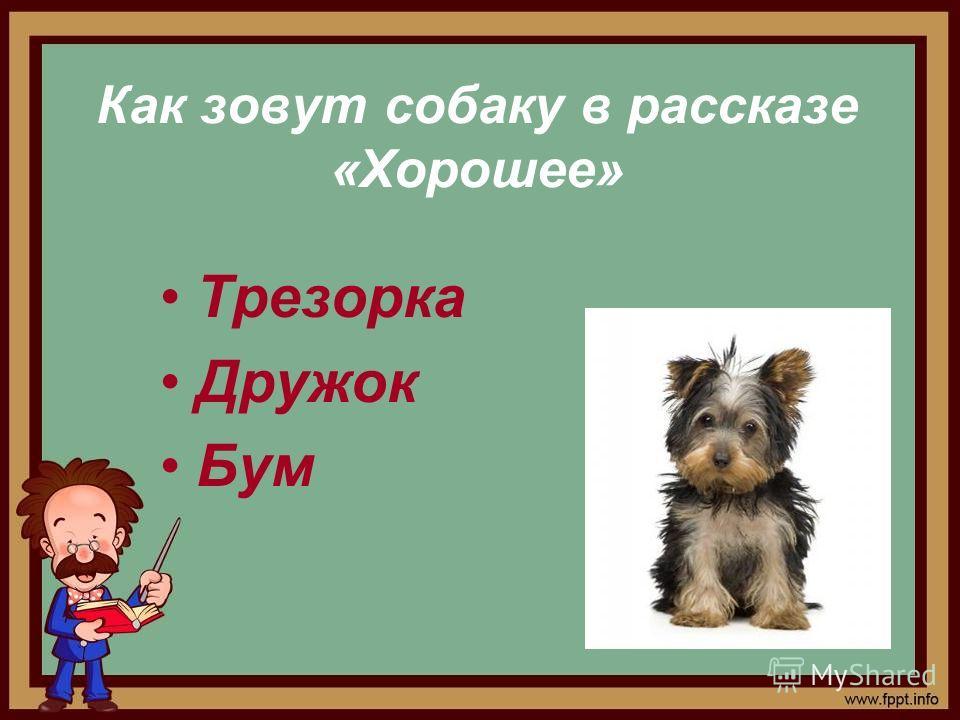 Как зовут собаку в рассказе «Хорошее» Трезорка Дружок Бум