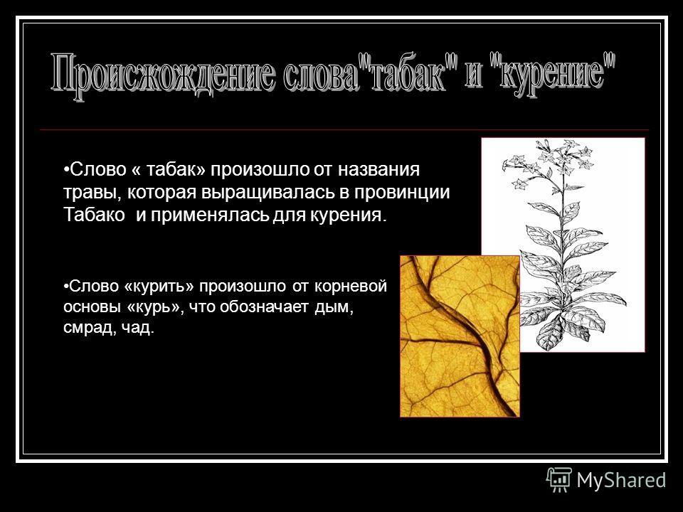 Слово « табак» произошло от названия травы, которая выращивалась в провинции Табако и применялась для курения. Слово «курить» произошло от корневой основы «курь», что обозначает дым, смрад, чад.