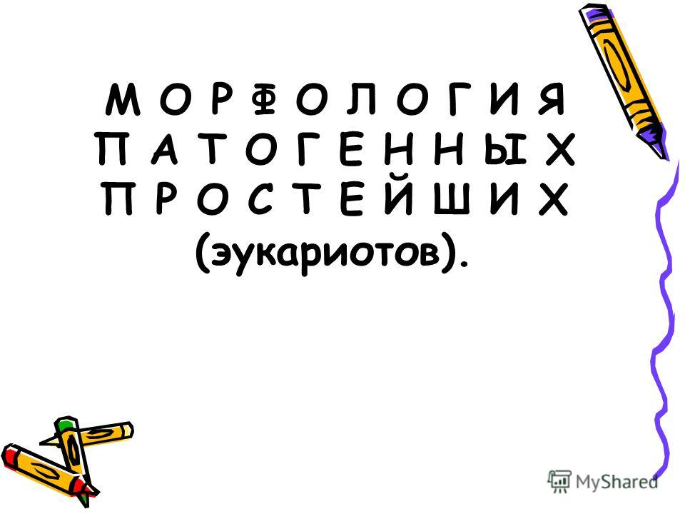 М О Р Ф О Л О Г И Я П А Т О Г Е Н Н Ы Х П Р О С Т Е Й Ш И Х (эукариотов).
