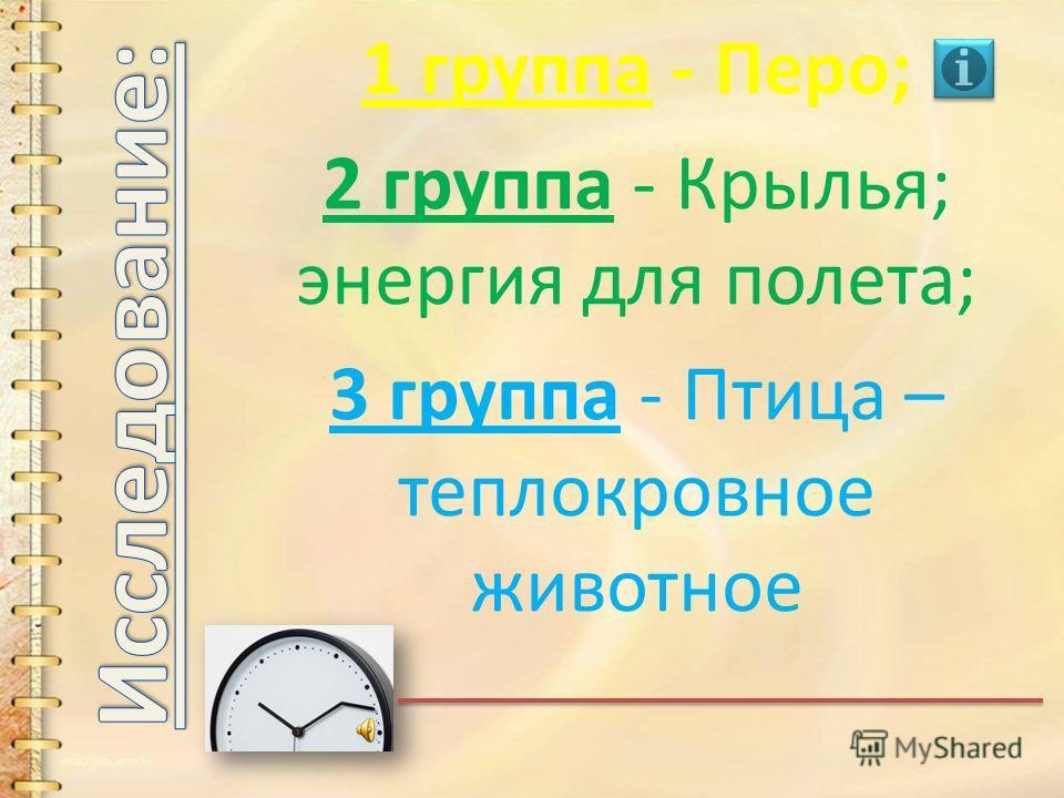 Лёгкий вес 1. кости пустые, полые, легкие, но прочные; 2. лёгкий клюв 1. кости пустые, полые, легкие, но прочные; 2. лёгкий клюв Перья