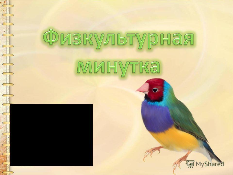 1 группа - Перо; 2 группа - Крылья; энергия для полета; 3 группа - Птица – теплокровное животное