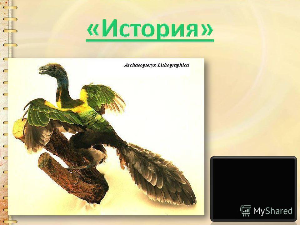 Наука, изучающая оседлых, кочующих и перелетных птиц называется орнитология.