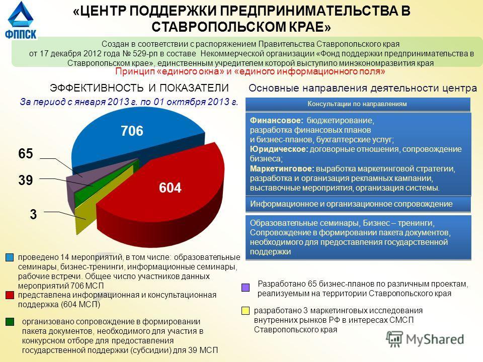 Создан в соответствии с распоряжением Правительства Ставропольского края от 17 декабря 2012 года 529-рп в составе Некоммерческой организации «Фонд поддержки предпринимательства в Ставропольском крае», единственным учредителем которой выступило минэко
