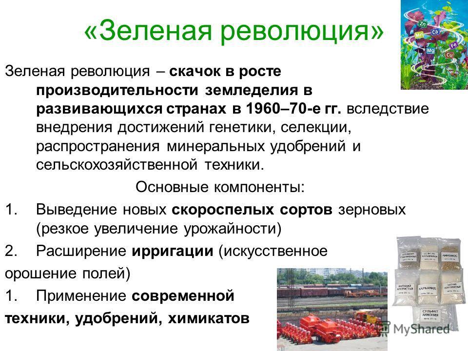 «Зеленая революция» Зеленая революция – скачок в росте производительности земледелия в развивающихся странах в 1960–70-е гг. вследствие внедрения достижений генетики, селекции, распространения минеральных удобрений и сельскохозяйственной техники. Осн