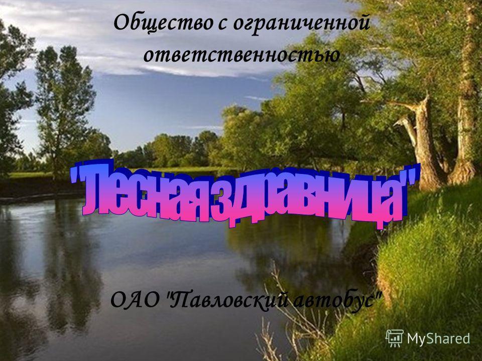 Общество с ограниченной ответственностью ОАО Павловский автобус