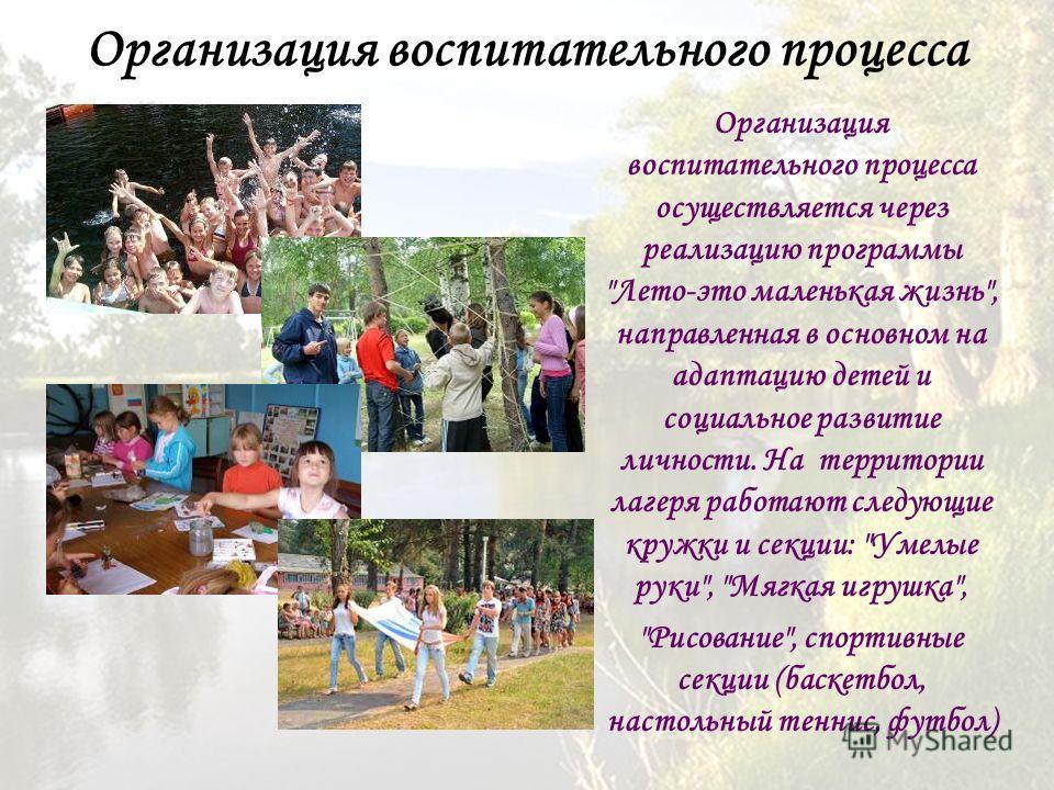 Организация воспитательного процесса Организация воспитательного процесса осуществляется через реализацию программы