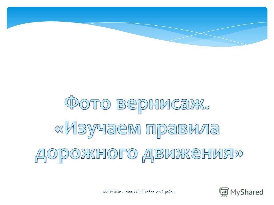 МАОУ «Бизинская СОШ Тобольский район