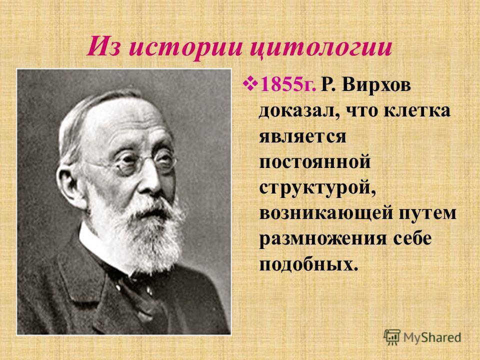 Из истории цитологии 1855 г. Р. Вирхов доказал, что клетка является постоянной структурой, возникающей путем размножения себе подобных.