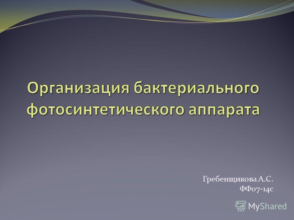 Гребенщикова А.С. ФФ07-14 с