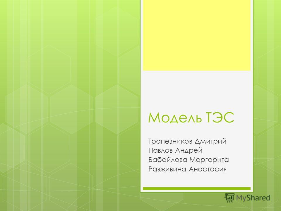 Модель ТЭС Трапезников Дмитрий Павлов Андрей Бабайлова Маргарита Разживина Анастасия