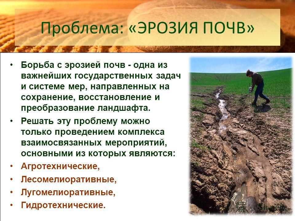 Проблема: «ЭРОЗИЯ ПОЧВ» Борьба с эрозией почв - одна из важнейших государственных задач и системе мер, направленных на сохранение, восстановление и преобразование ландшафта. Решать эту проблему можно только проведением комплекса взаимосвязанных мероп