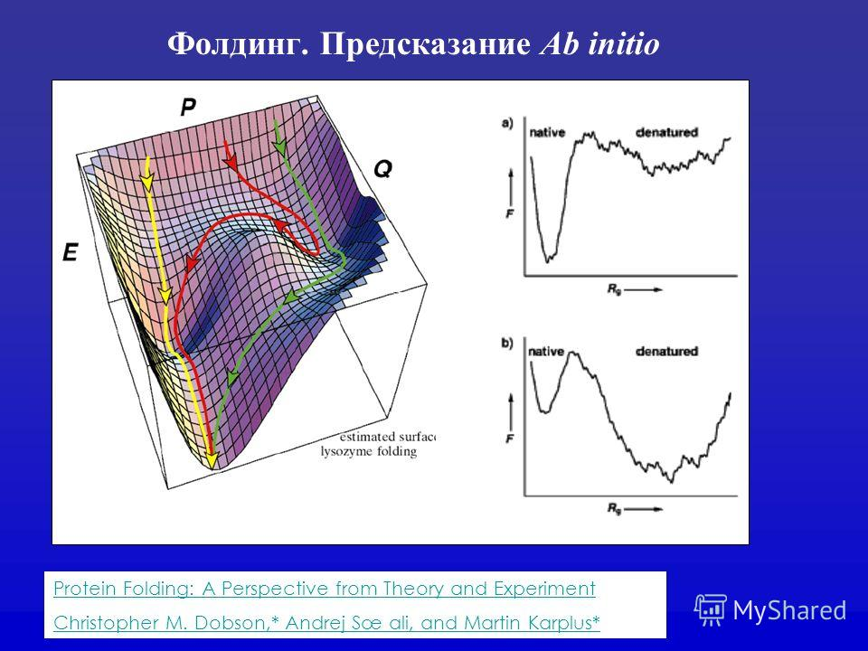 Фолдинг. Предсказание Ab initio Protein Folding: A Perspective from Theory and Experiment Christopher M. Dobson,* Andrej Sœ ali, and Martin Karplus*