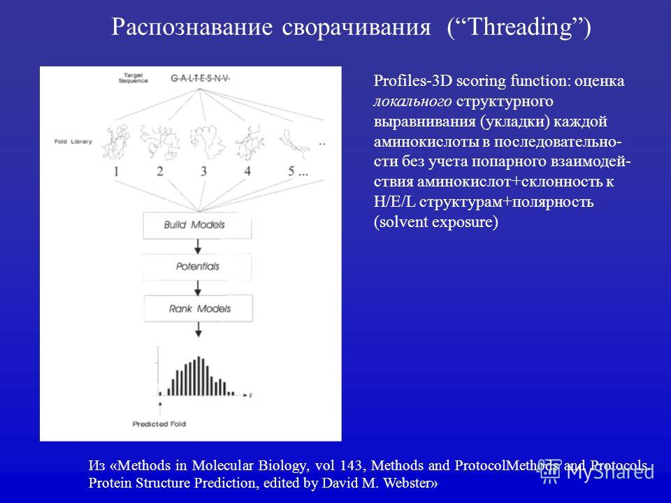 Из «Methods in Molecular Biology, vol 143, Methods and ProtocolMethods and Protocols. Protein Structure Prediction, еdited by David M. Webster» Profiles-3D scoring function: оценка локального структурного выравнивания (укладки) каждой аминокислоты в