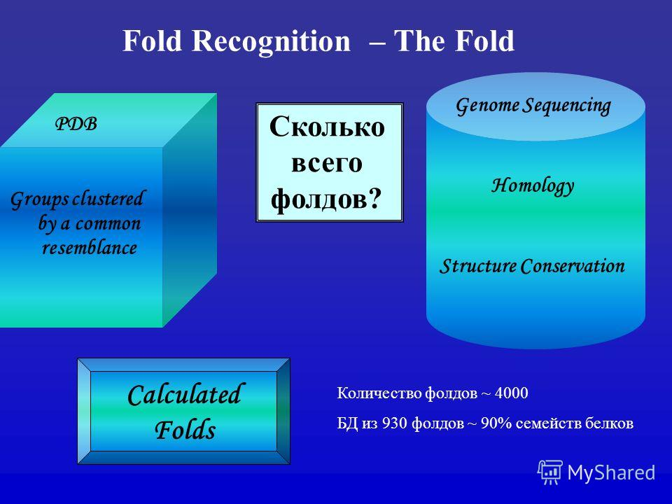 Fold Recognition – The Fold PDB Groups clustered by a common resemblance Genome Sequencing Homology Structure Conservation Calculated Folds Сколько всего фолдов? Количество фолдов ~ 4000 БД из 930 фолдов ~ 90% семейств белков