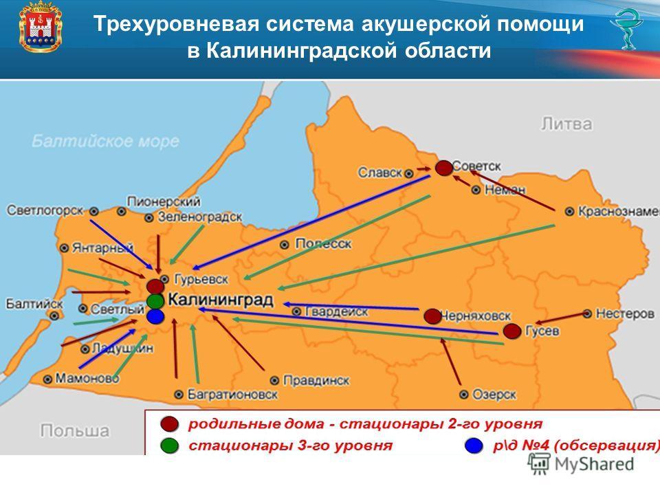 Трехуровневая система акушерской помощи в Калининградской области