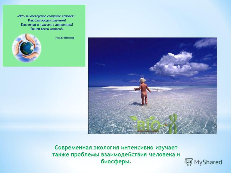 Современная экология интенсивно изучает также проблемы взаимодействия человека и биосферы.