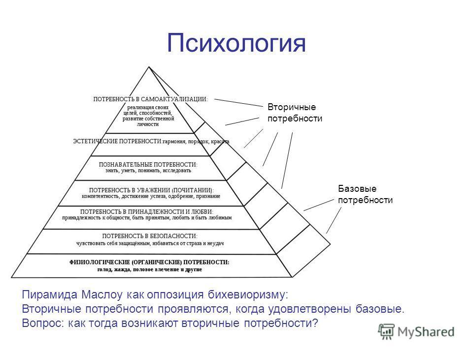 Психология Пирамида Маслоу как оппозиция бихевиоризму: Вторичные потребности проявляются, когда удовлетворены базовые. Вопрос: как тогда возникают вторичные потребности? Базовые потребности Вторичные потребности
