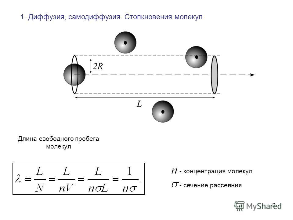 2 1. Диффузия, самодиффузия. Столкновения молекул Длина свободного пробега молекул - концентрация молекул - сечение рассеяния