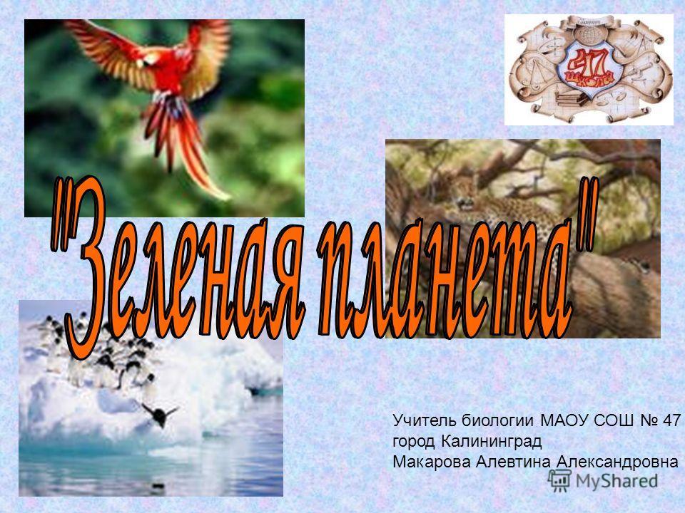 Учитель биологии МАОУ СОШ 47 город Калининград Макарова Алевтина Александровна