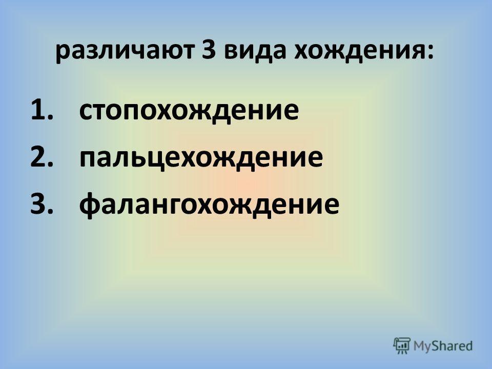 различают 3 вида хождения: 1. стопохождение 2. пальце хождение 3.фалангохождение