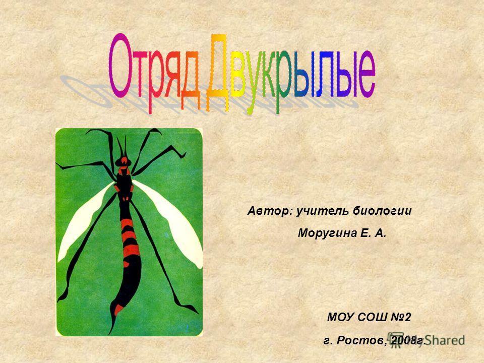 МОУ СОШ 2 Автор: учитель биологии Моругина Е. А. г. Ростов, 2008 г.