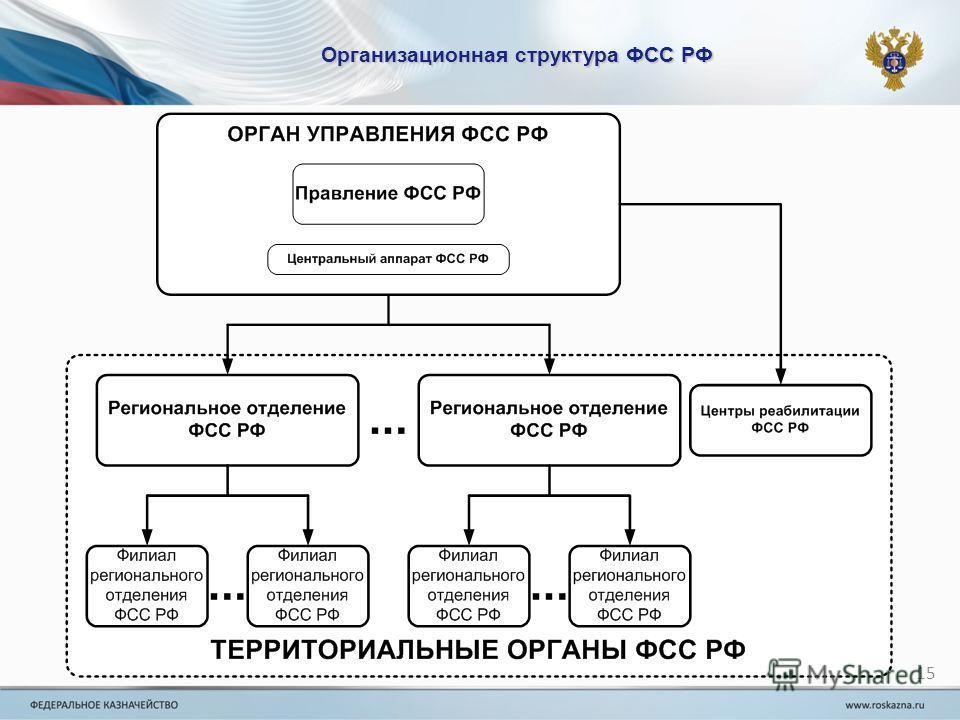 Организационная структура ФСС РФ 15