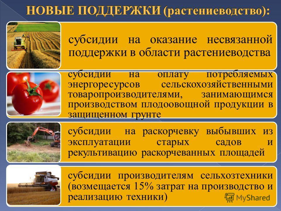 субсидии на оказание несвязанной поддержки в области растениеводства субсидии на оплату потребляемых энергоресурсов сельскохозяйственными товаропроизводителями, занимающимся производством плодоовощной продукции в защищенном грунте субсидии на раскорч