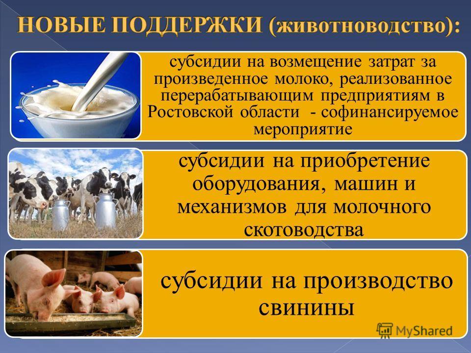 субсидии на возмещение затрат за произведенное молоко, реализованное перерабатывающим предприятиям в Ростовской области - софинансируемое мероприятие субсидии на приобретение оборудования, машин и механизмов для молочного скотоводства субсидии на про