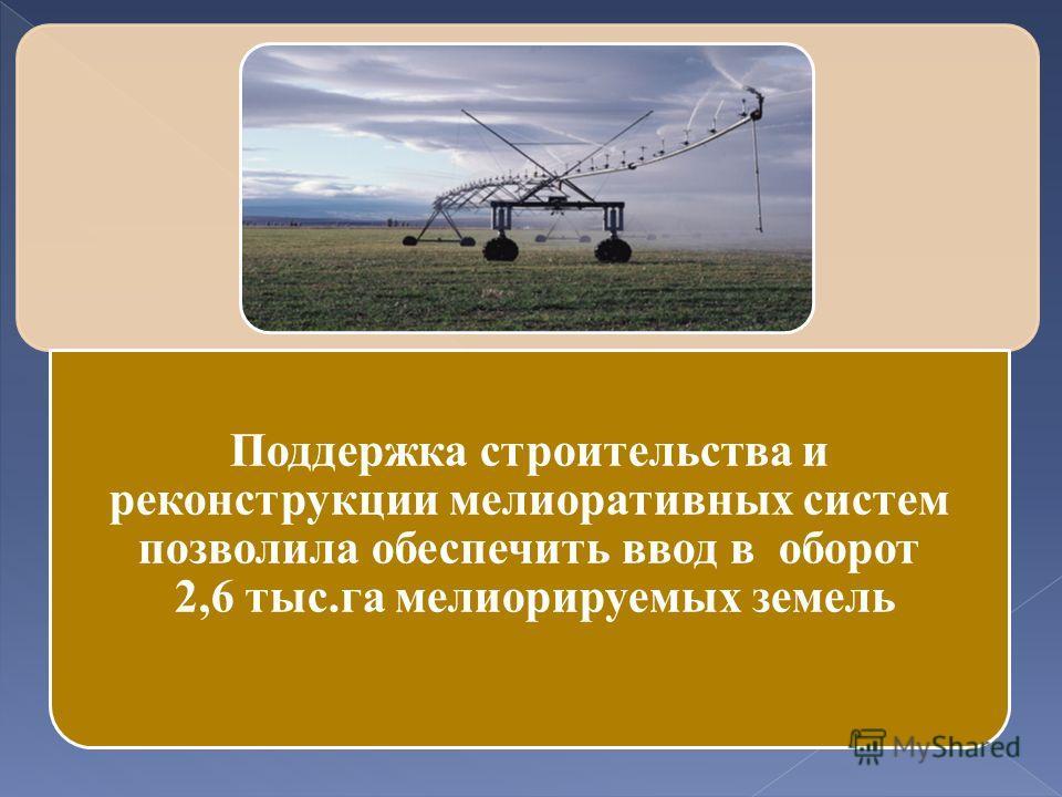 Поддержка строительства и реконструкции мелиоративных систем позволила обеспечить ввод в оборот 2,6 тыс.га мелиорируемых земель