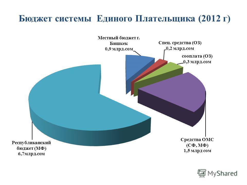 Бюджет системы Единого Плательщика (2012 г)