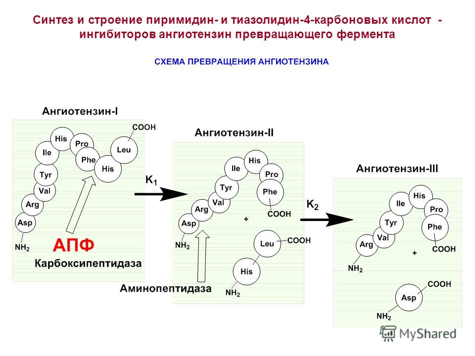 Cинтез и строение пиримидин- и тиазолидин-4-карбоновых кислот - ингибиторов ангиотензин превращающего фермента