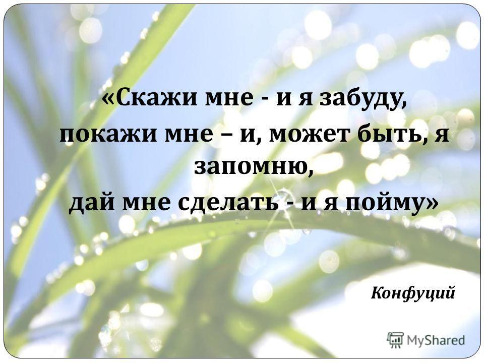 « Скажи мне - и я забуду, покажи мне – и, может быть, я запомню, дай мне сделать - и я пойму » Конфуций