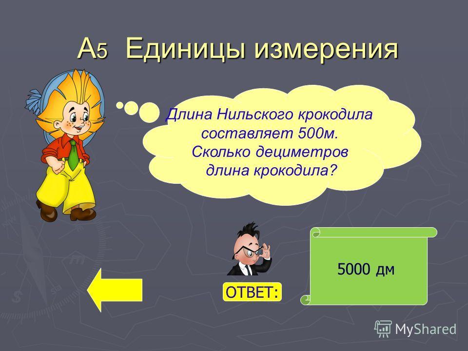 А 5 Единицы измерения 5000 дм Длина Нильского крокодила составляет 500 м. Сколько дециметров длина крокодила? ОТВЕТ: