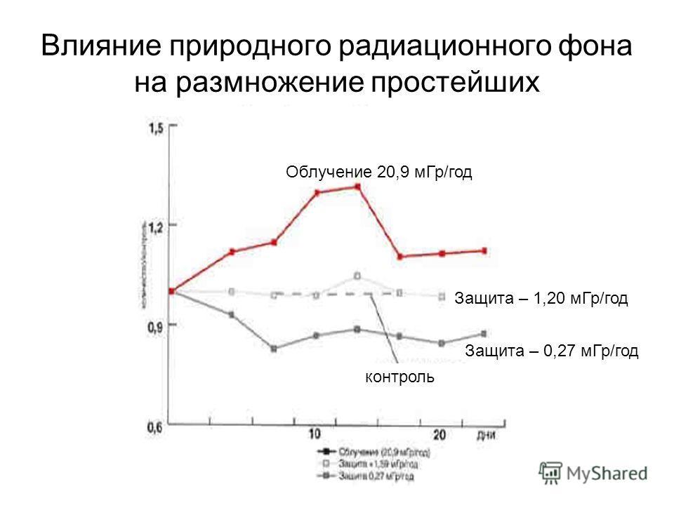 Влияние природного радиационного фона на размножение простейших Защита – 0,27 м Гр/год Защита – 1,20 м Гр/год Облучение 20,9 м Гр/год контроль