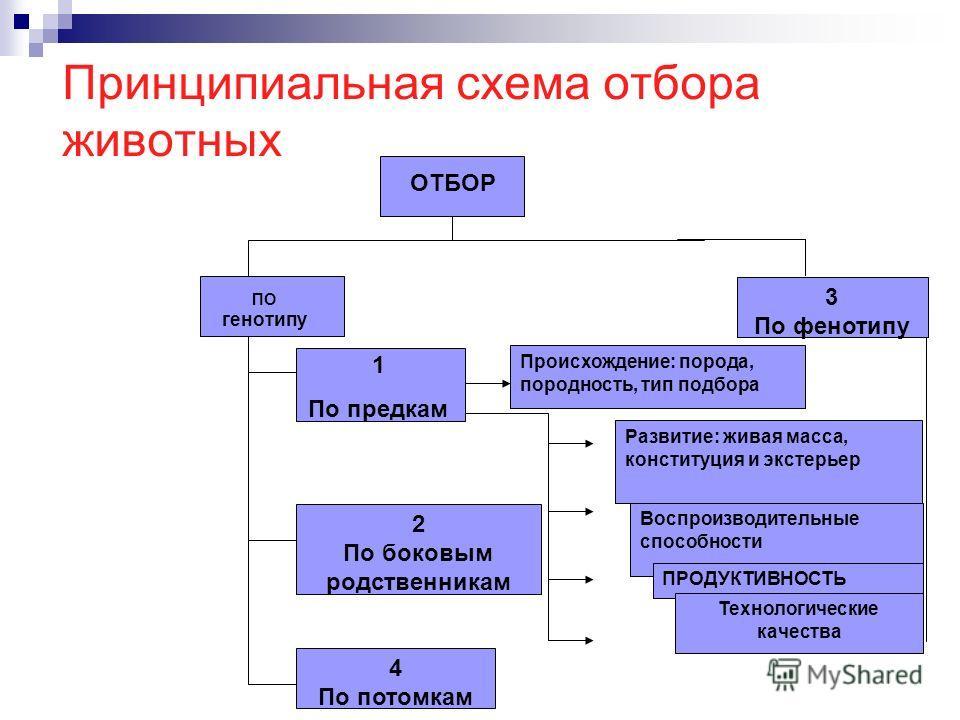 Принципиальная схема отбора