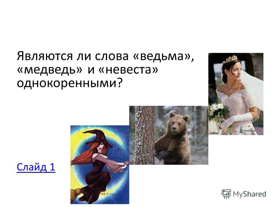 Являются ли слова «ведьма», «медведь» и «невеста» однокоренными? Слайд 1