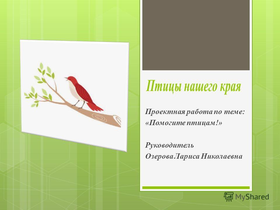 Проектная работа по теме: «Помогите птицам!» Руководитель Озерова Лариса Николаевна