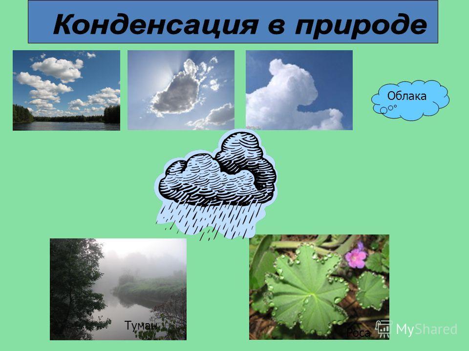 Облака Туман Роса