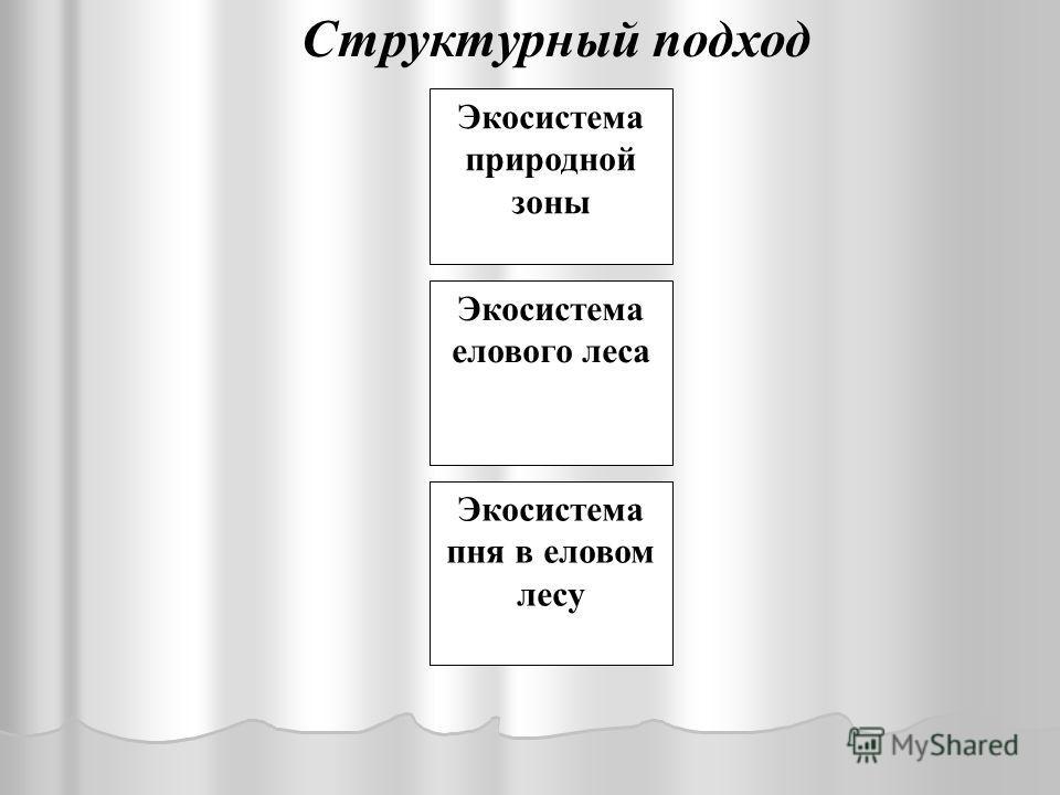 Экосистема дерева- эдификатора елового леса Экосистема ручья в еловом лесу Экосистема пня в еловом лесу Структурный подход Экосистема елового леса Экосистема природной зоны
