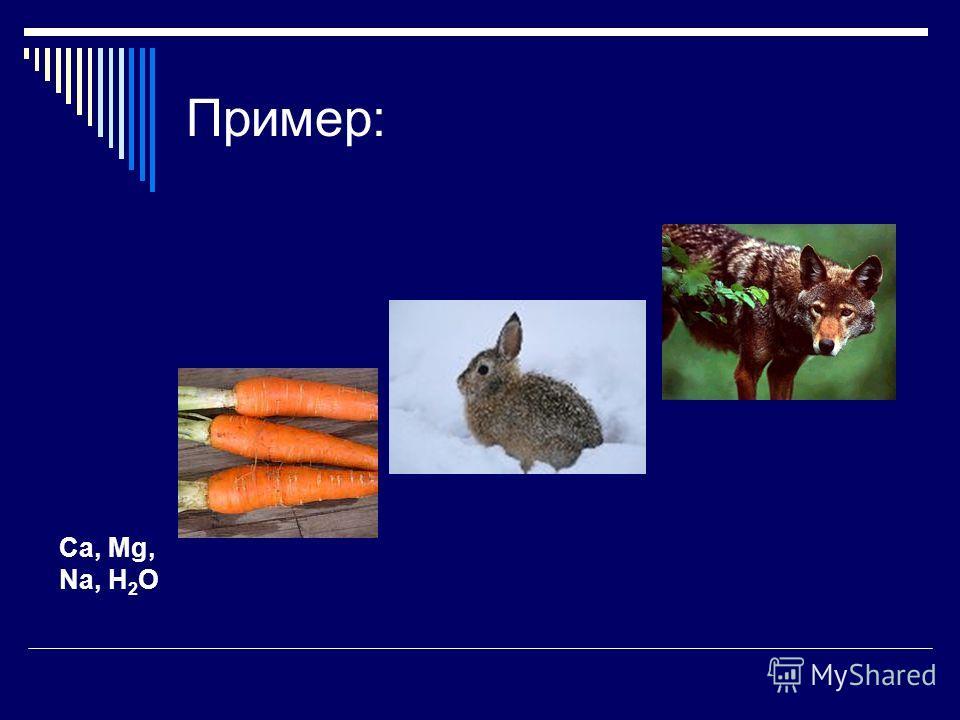 Пример: Ca, Mg, Na, H 2 O