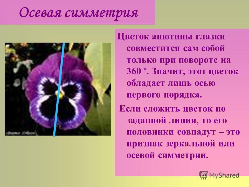 Осевая симметрия Цветок анютины глазки совместится сам собой только при повороте на 360 º. Значит, этот цветок обладает лишь осью первого порядка. Если сложить цветок по заданной линии, то его половинки совпадут – это признак зеркальной или осевой си