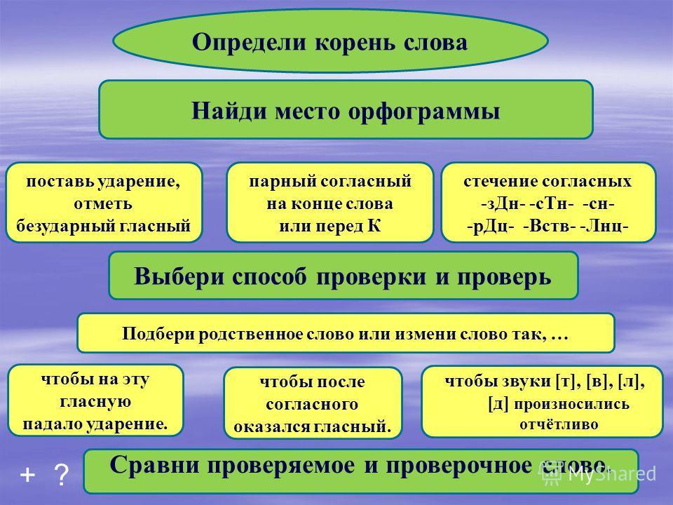 Определи корень слова Найди место орфограммы Выбери способ проверки и проверь Сравни проверяемое и проверочное слово. поставь ударение, отметь безударный гласный парный согласный на конце слова или перед К стечение согласных -з Дн- -сн- -сн- -р Дц- -