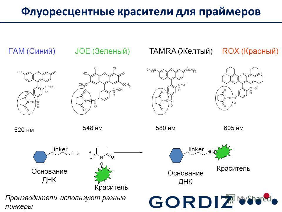 FAM (Синий)JOE (Зеленый)TAMRA (Желтый)ROX (Красный) Флуоресцентные красители для праймеров Основание ДНК Краситель 520 нм 548 нм 580 нм 605 нм linker Производители используют разные линкеры
