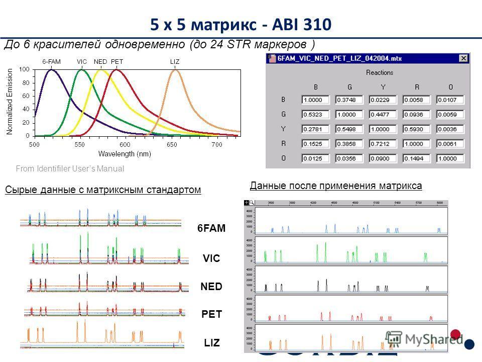 5 x 5 матрикс - ABI 310 6FAM VIC NED PET LIZ Сырые данные с матриксным стандартом Данные после применения матрикса From Identifiler Users Manual До 6 красителей одновременно (до 24 STR маркеров )