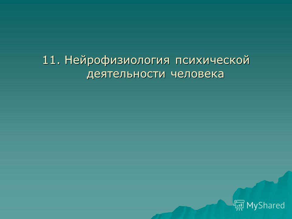 11. Нейрофизиология психической деятельности человека