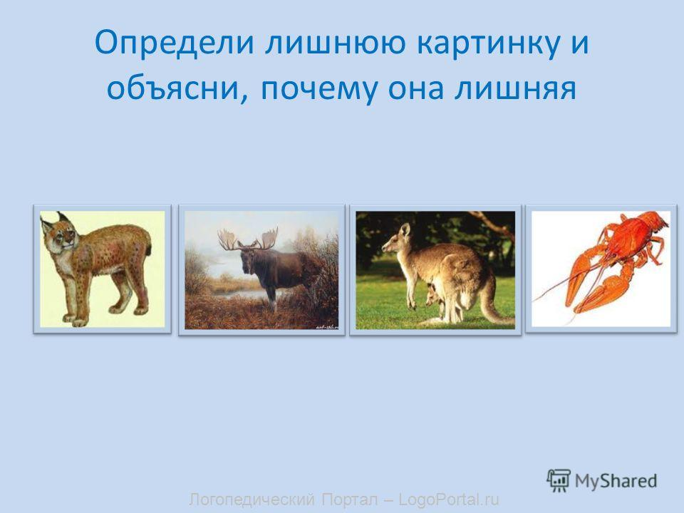 Определи лишнюю картинку и объясни, почему она лишняя Логопедический Портал – LogoPortal.ru