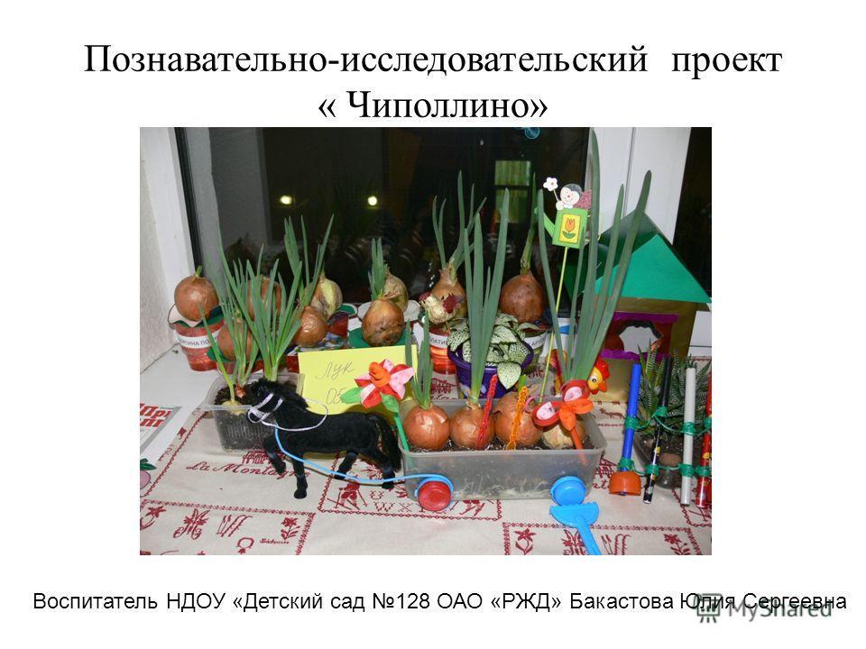 Познавательно-исследовательский проект « Чиполлино» Воспитатель НДОУ «Детский сад 128 ОАО «РЖД» Бакастова Юлия Сергеевна