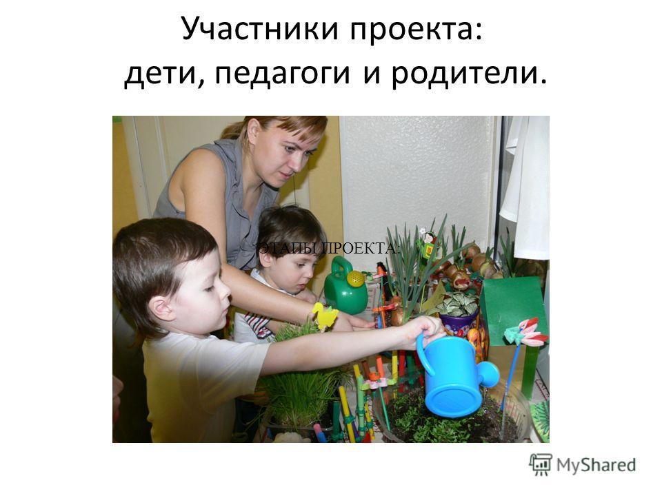 Участники проекта: дети, педагоги и родители. ЭТАПЫ ПРОЕКТА: