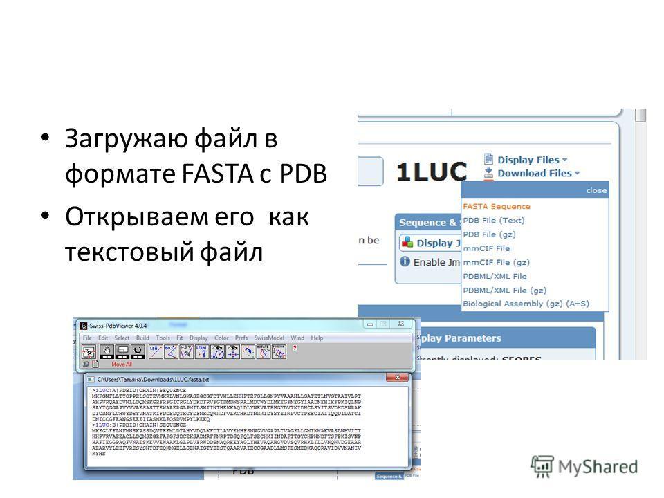 Загружаю файл в формате FASTA с PDB Открываем его как текстовый файл